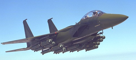 爆装したF-15E